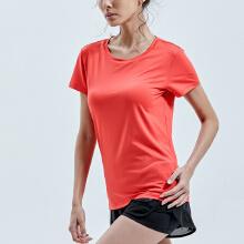安踏T恤女 2019春夏季新款运动服健身T恤透气短袖女